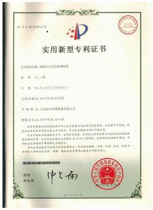 泥膜共生反应处理装置专利证书